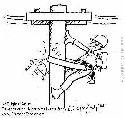 Woodpecker and telegraph pole cartoon